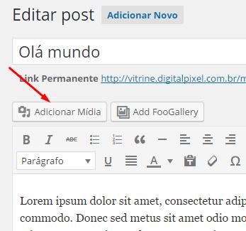 Botão Adicionar Mídia WordPress
